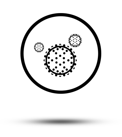 Logo-Schimmels